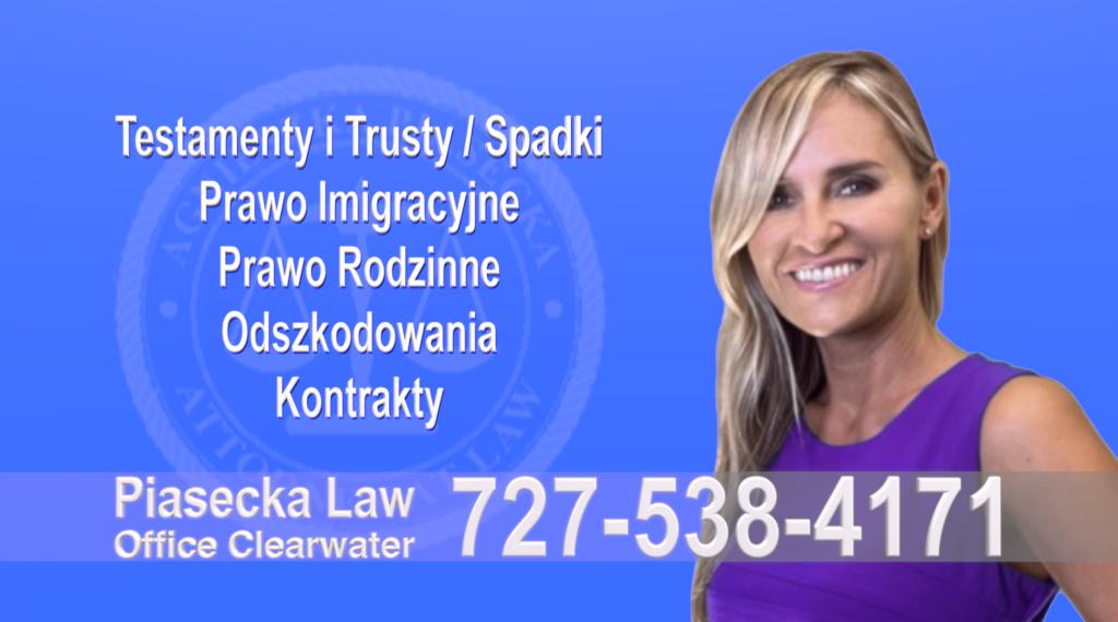 St. Petersburg, St. Pete, Pinellas, Florida, Polski, Prawnik, Adwokat, Floryda, USA, Polish, Attorney, Lawyer, Agnieszka Piasecka, Aga Piasecka, Piasecka Law, Piasecka